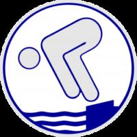 Jugendschwimmabzeichen Silber Logo